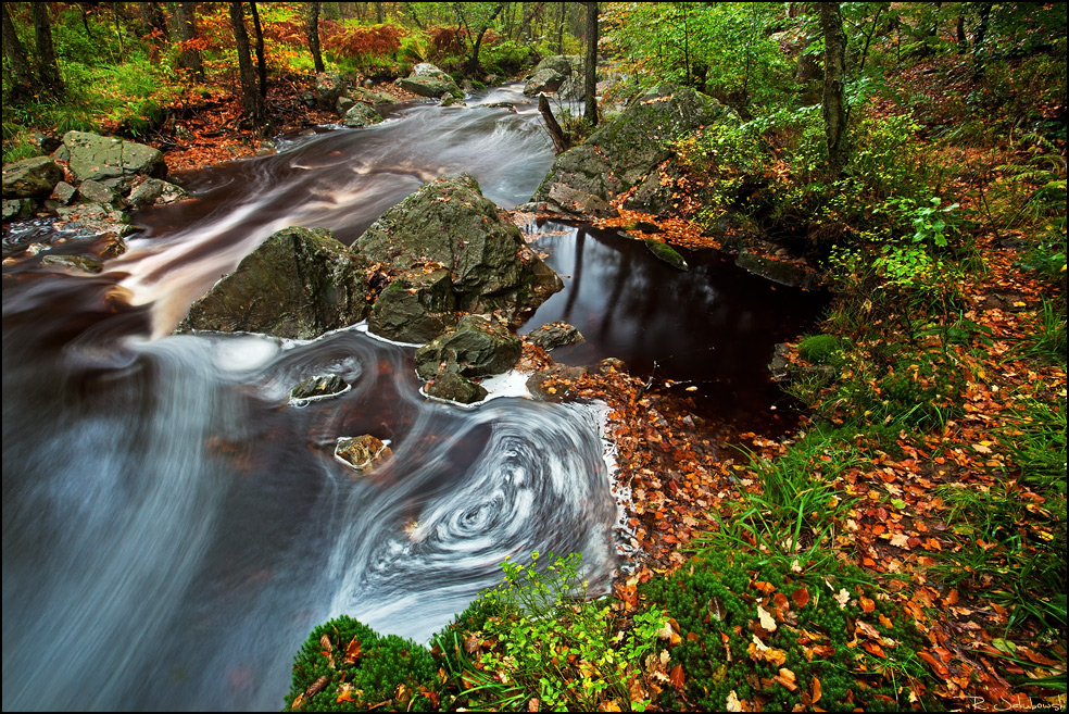 Herbst in den Ardennen