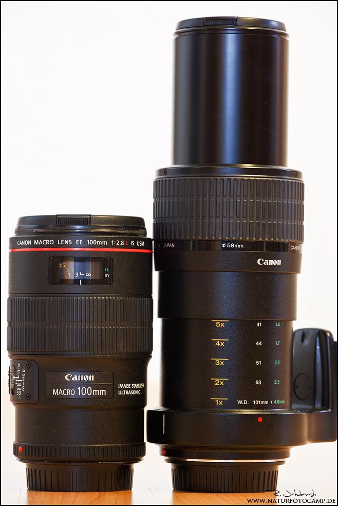 Canon MP-E 2,8 65 Erfahrungen