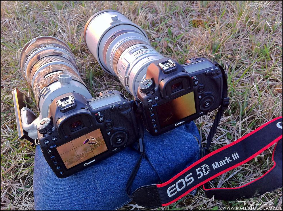 Canon EOS 5d III zu viele Neuerungen?