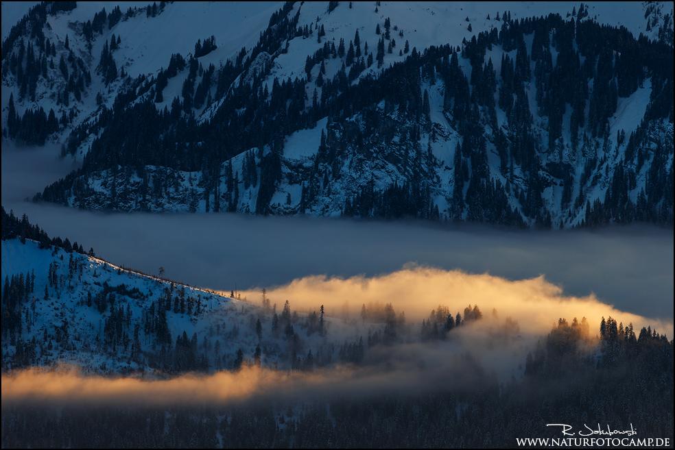 Lichtblicke im Schnee