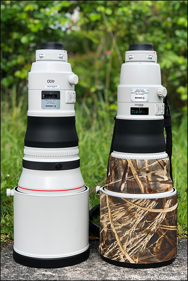 Canon 2.8 400mm L IS II vs. Canon 2.8 400mm L IS III