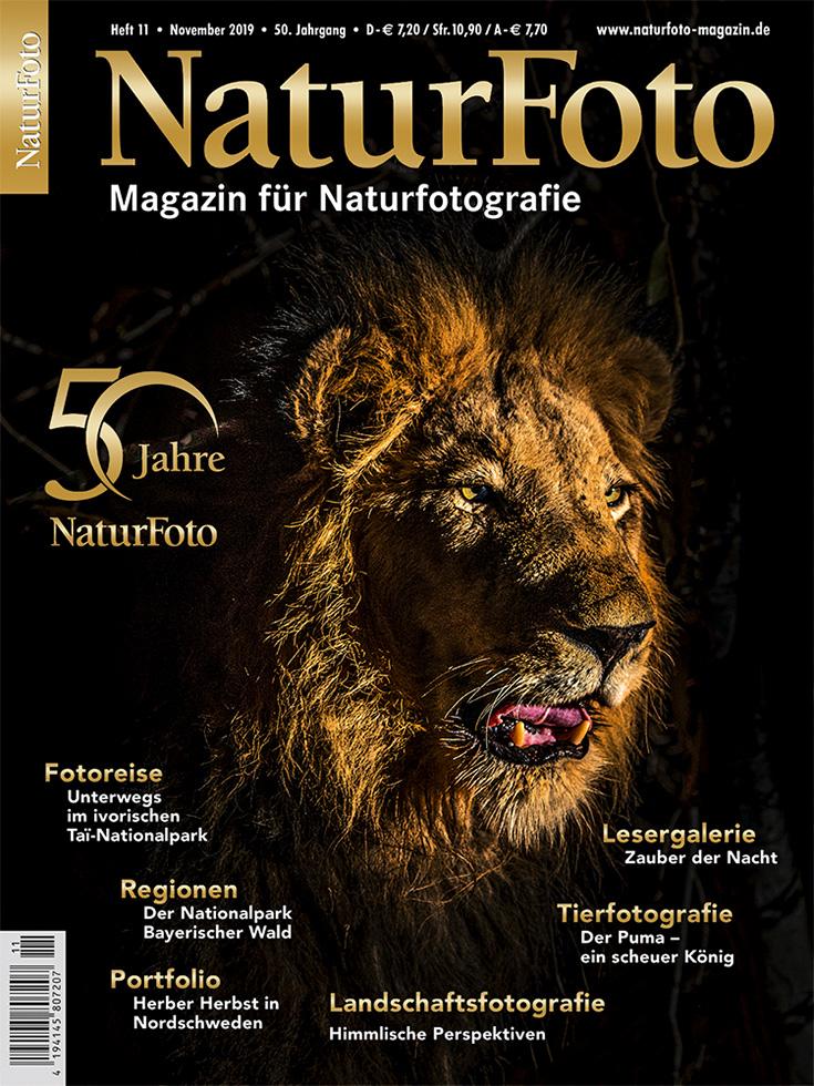 50 Jahre Naturfoto – Mein Artikel