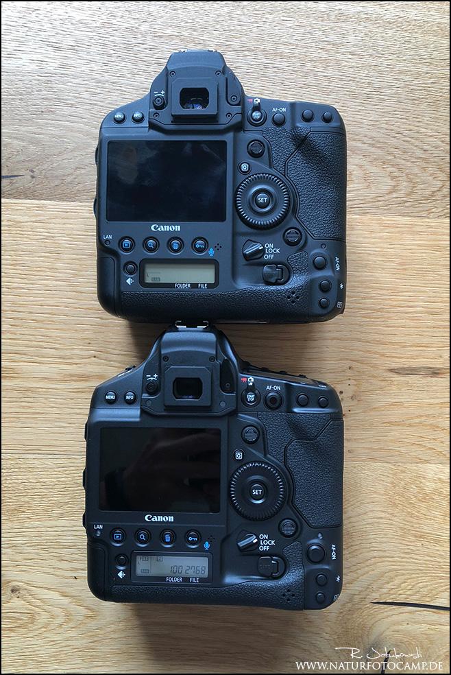 Erste Erfahrung und Eindrücke Canon EOS 1DX Mark III