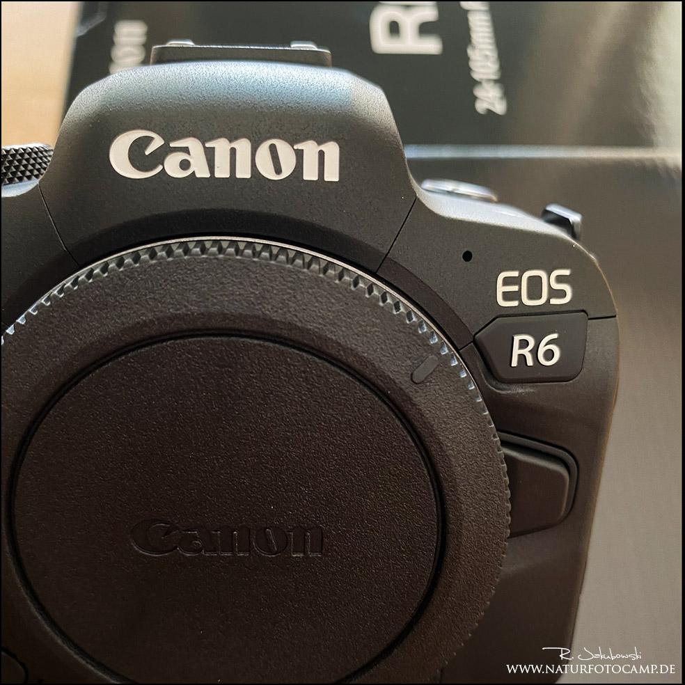 Blogtalk – Canon EOS R6 erster Eindruck und Vergleich Bildqualität zur Canon EOS R5 und 1DX II