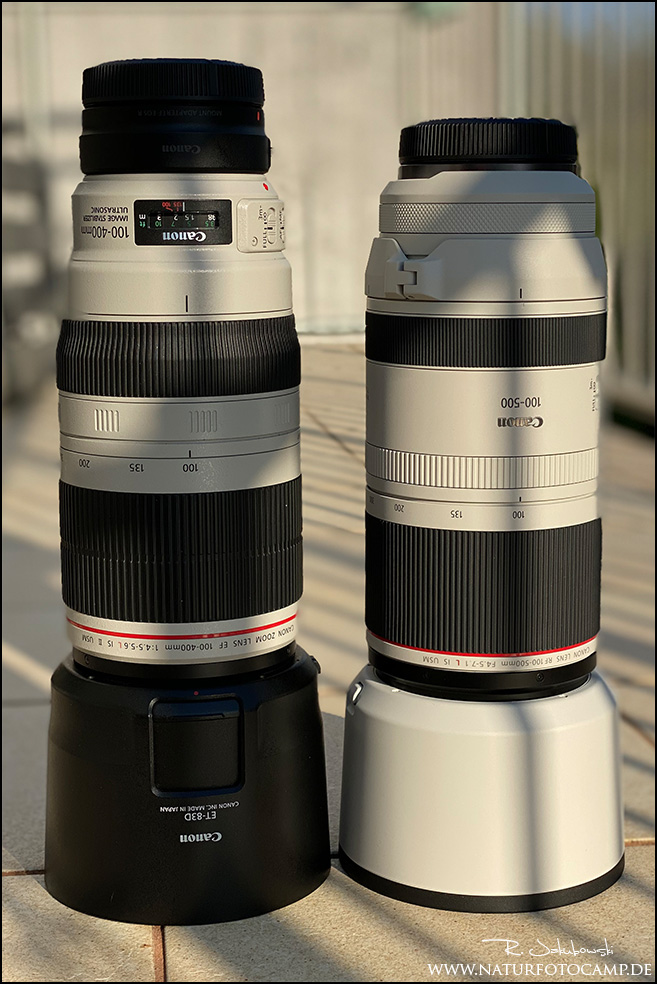 Canon RF 4,5-7,1 100-500mm L IS vs. Canon EF 4,5-5,6 100-400mm L IS II vs. Tamron 5-6,3 150-600mm