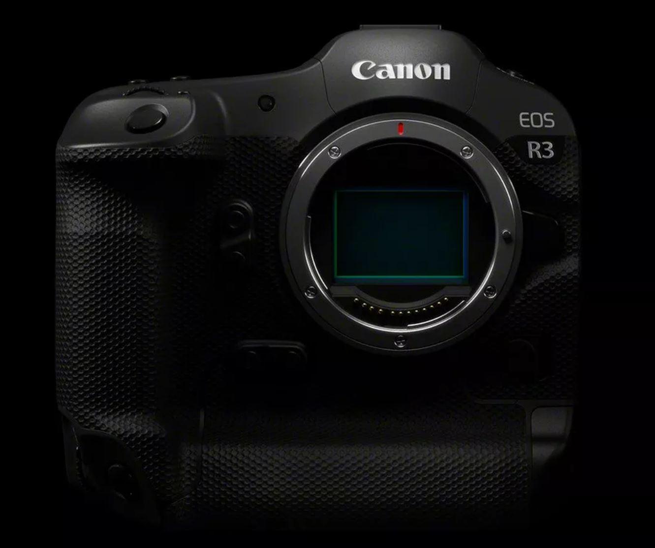 32. Bohnensack – Blogtalk Naturfotonews Canon EOS R3, Canon RF Supertele und mehr