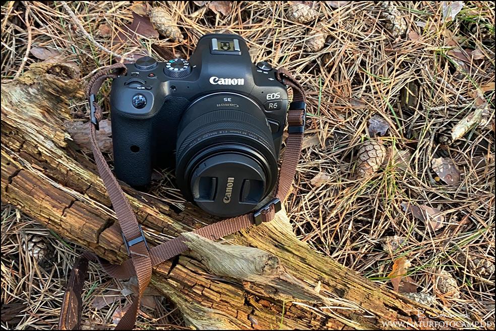Langzeiterfahrungen mit der Canon EOS R6 kein Test