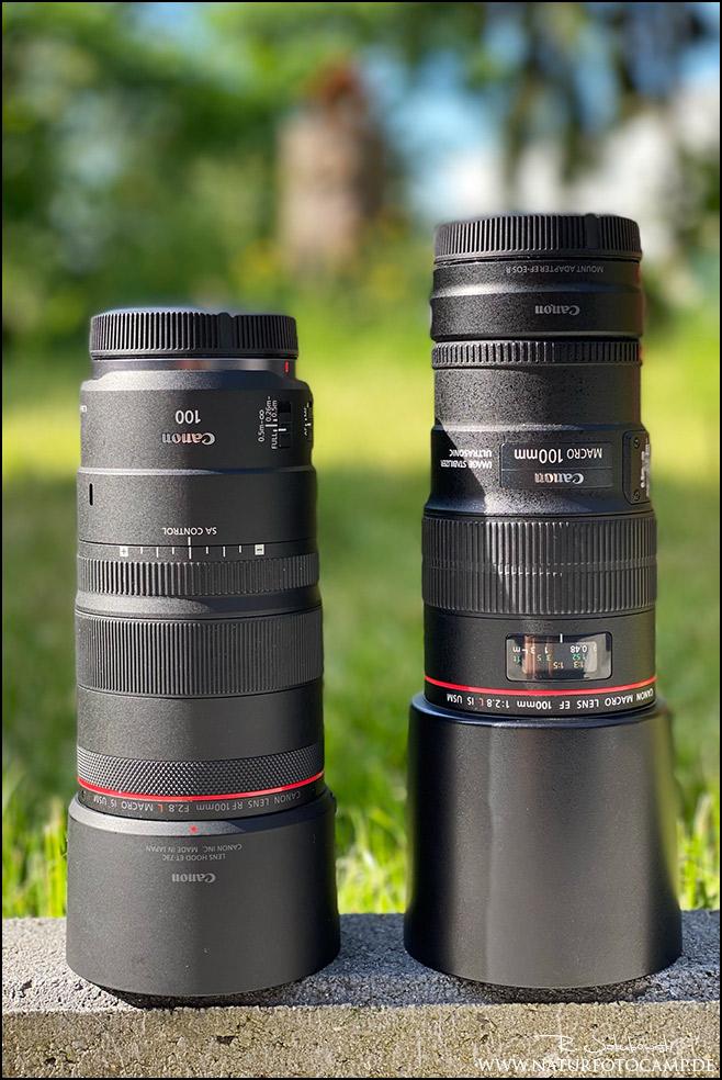 Canon RF 100mm 2.8 L IS USM Macro vs. Canon EF 100mm 2.8 L IS USM Macro