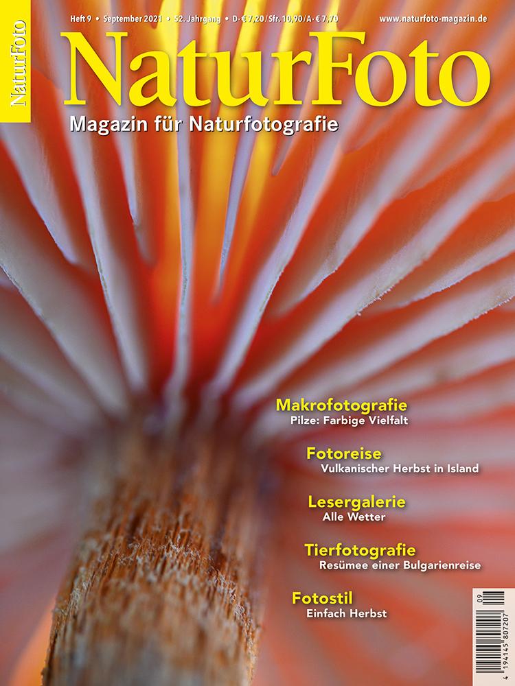 Artikel Naturfoto 09/21